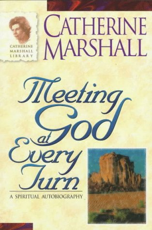 9780800792312: Meeting God at Every Turn: A Personal Family History