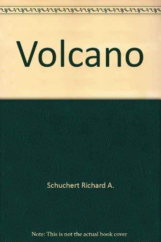 9780800880330: Volcano