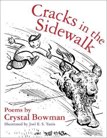 9780801012273: Cracks in the Sidewalk