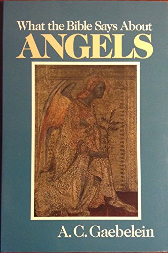 9780801038105: What the Bible Says About Angels