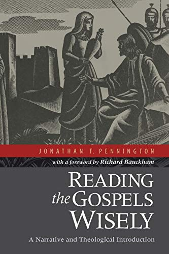 9780801039379: Reading the Gospels Wisely: A Narrative and Theological Introduction