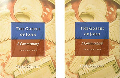 9780801046759: The Gospel of John: A Commentary
