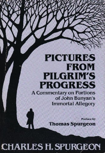 9780801082153: Pictures From Pilgrim's Progress