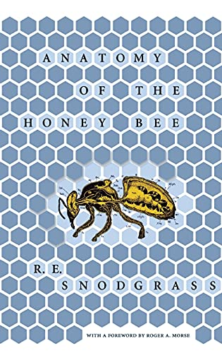 Anatomy of the Honey Bee: Snodgrass, R.E.