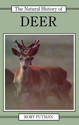 9780801422836: The Natural History of Deer (Natural History of Mammals Series)