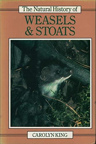 9780801424281: Natural History of Weasels and Stoats (Natural History of Mammals Series)