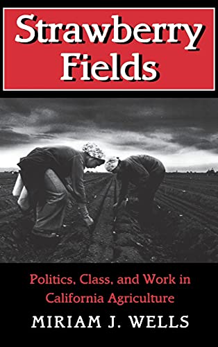 9780801431722: Strawberry Fields: Politics, Class, and Work in California Agriculture (The Anthropology of Contemporary Issues)