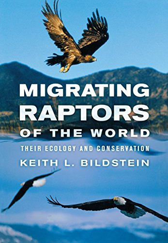 Migrating Raptors of the World: Their Ecology: Bildstein, Keith L.
