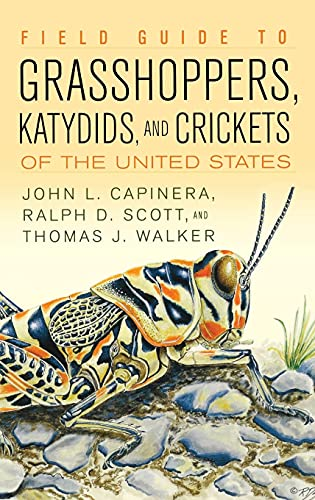 Field Guide To Grasshoppers, Katydids, And Crickets: John L. Capinera,
