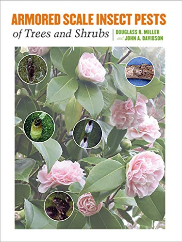 Armored Scale Insect Pests of Trees and Shrubs: (Hemiptera: Diaspididae) (Hardcover): Douglass R. ...
