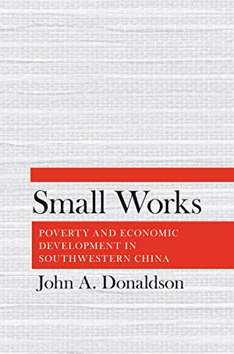 9780801449680: Small Works: Poverty and Economic Development in Southwestern China