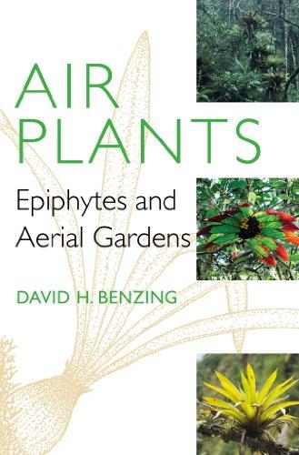 Air Plants: Epiphytes and Aerial Gardens: Benzing, David H.