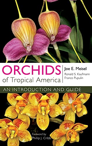 9780801453359: Orchids of Tropical America: An Introduction and Guide