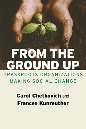 From the Ground Up: Grassroots Organizations Making Social Change (Paperback): Carol Chetkovich
