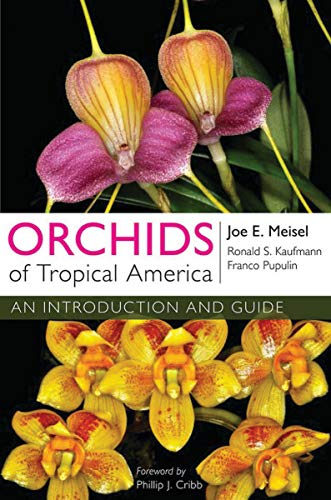 9780801477683: Orchids of Tropical America: An Introduction and Guide