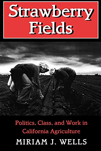 9780801482793: Strawberry Fields: Politics, Class, and Work in California Agriculture (The Anthropology of Contemporary Issues)