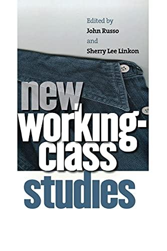 9780801489679: New Working-Class Studies (Ilr Press Book)