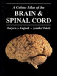 9780801662881: A Colour Atlas of the Brain and Spinal Cord