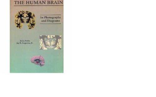 9780801681257: Human Brain in Photogs & Diagrams