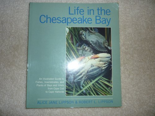 Life in the Chesapeake Bay