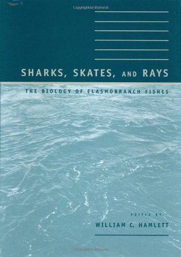9780801860485: Sharks, Skates, and Rays: The Biology of Elasmobranch Fishes