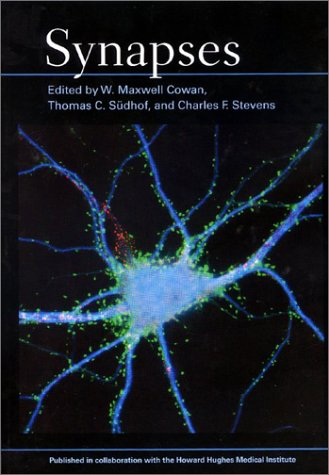 9780801871184: Synapses