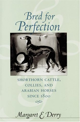 9780801873447: Bred for Perfection: Shorthorn Cattle, Collies, and Arabian Horses since 1800 (Animals, History, Culture)