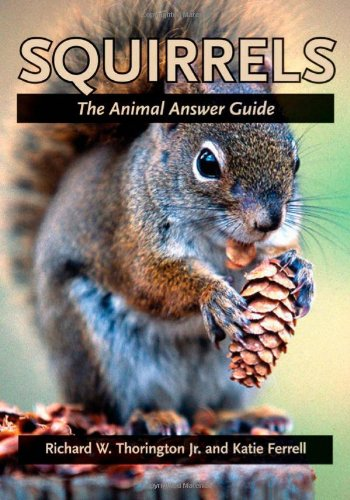 9780801884023: Squirrels: The Animal Answer Guide (The Animal Answer Guides: Q&A for the Curious Naturalist)