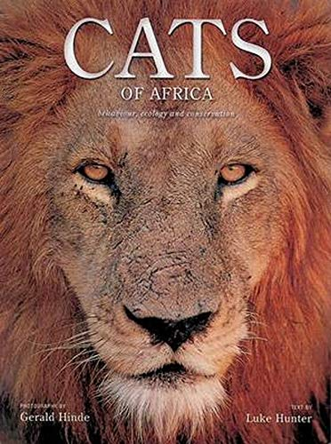 9780801884825: Cats of Africa: Behavior, Ecology, and Conservation