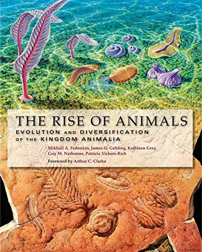 9780801886799: The Rise of Animals: Evolution and Diversification of the Kingdom Animalia