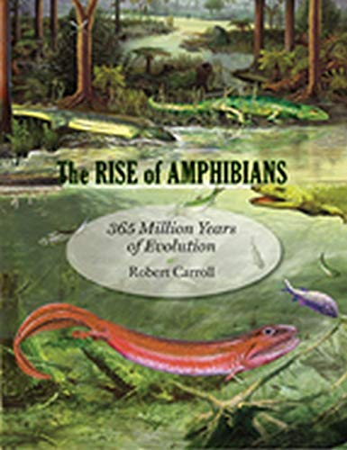 9780801891403: The Rise of Amphibians: 365 Million Years of Evolution
