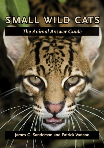 9780801898846: Small Wild Cats - The Animal Answer Guide