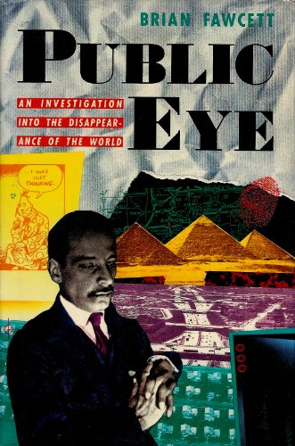 Public Eye: An Investigation into the Disappearance of the World: Fawcett, Brian