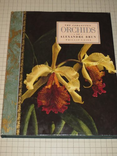 9780802115003: The Forgotten Orchids of Alexandre Brun