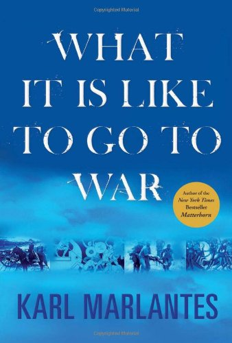 9780802119926: What It Is Like to Go to War
