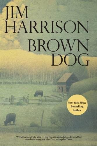 9780802122865: Brown Dog