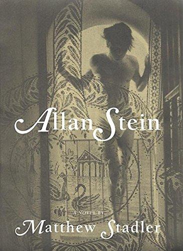 9780802136626: Allan Stein