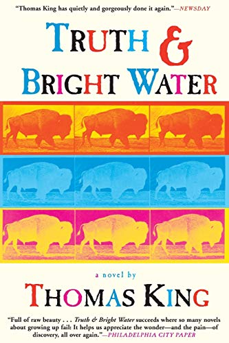 9780802138408: Truth and Bright Water: A Novel