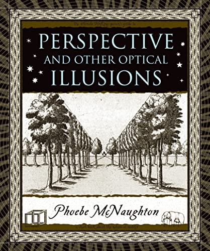 9780802716330: Perspective and Other Optical Illusions (Wooden Books)