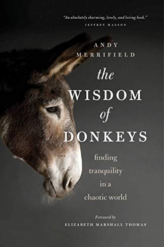 9780802719928: The Wisdom of Donkeys: Finding Tranquility in a Chaotic World