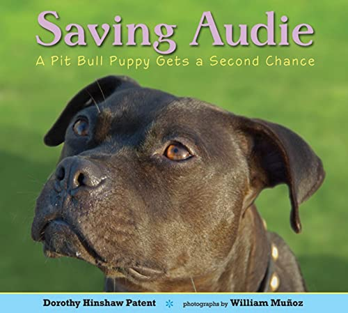 Saving Audie: A Pit Bull Puppy Gets a Second Chance (9780802722720) by Dorothy Hinshaw Patent; William Muñoz