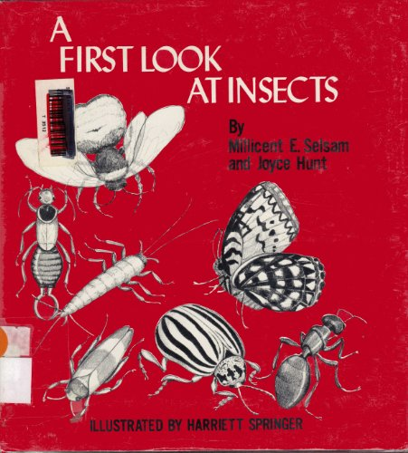 9780802761811: A first look at insects (A First look at series)