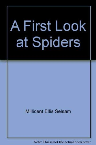 A first look at spiders (A First look at series)