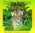9780802775030: Rain Forest Babies