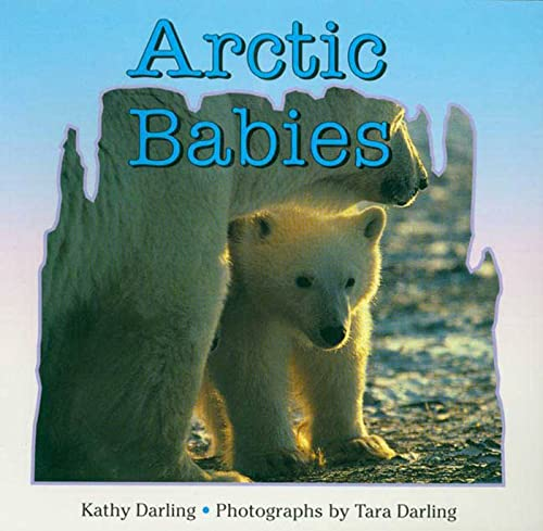 9780802775047: Arctic Babies
