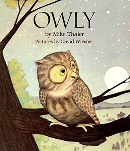 9780802775450: Owly