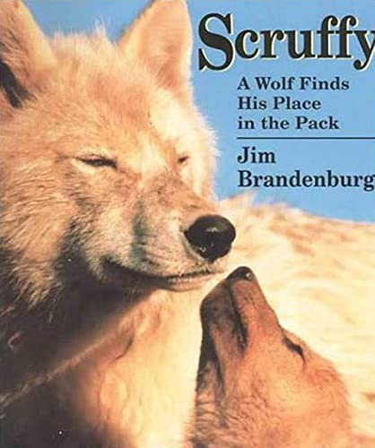 Scruffy: A Wolf Finds His Place in the Pack: Brandenburg, Jim