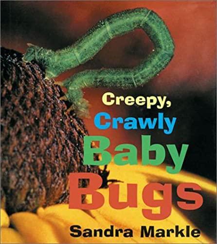 9780802776594: Creepy, Crawly Baby Bugs