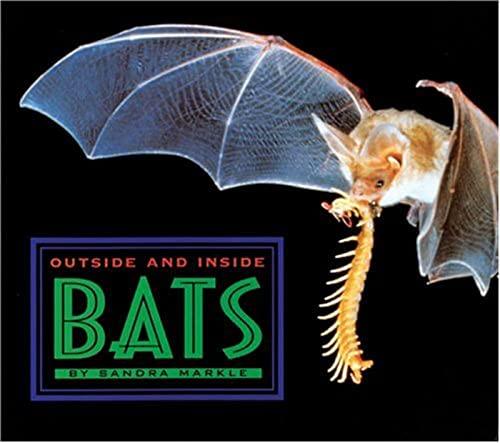 Outside and Inside Bats (Outside and Inside (Walker & Company)): Sandra Markle