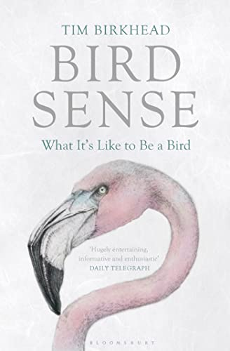 9780802779663: Bird Sense: What It's Like to Be a Bird